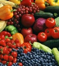 Voeding voor gezonde darmen